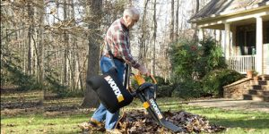 Best Electric Leaf Shredders in 2017 Reviews – Buying Guide