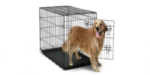 Best Dog Crates in 2018 Reviews