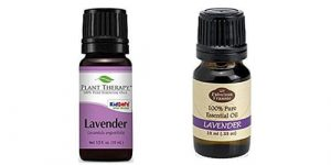 Top 10 Best Lavender Oils 2018 Reviews