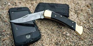 Top 10 Best Pocket Folding Knife in 2020 Reviews