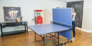 Top 10 Best Table Tennis Table in 2020 Review